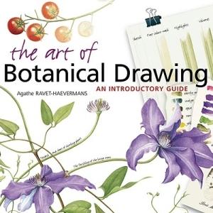 artofbotanicaldrawing