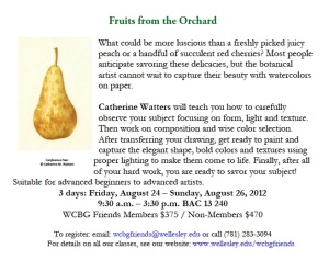 Draw and paint summer fruit at wellesley college botanic gardens artplantae for Wellesley college botanic gardens