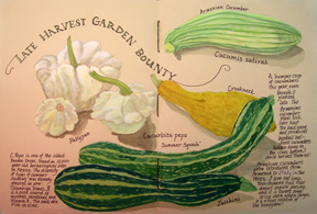 Garden journal-squash final 72 res
