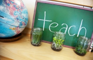 iStock_TeachingPlants_ExtraSmall copy
