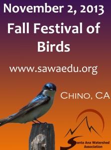 Bird Fest image