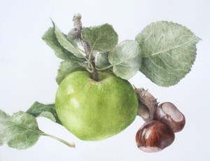 Orchard Fruits, © Elaine Searle. All rights reserved.