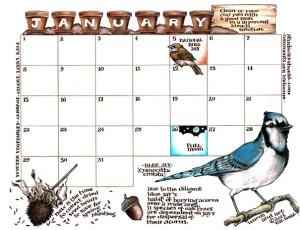 Order the new calendar!