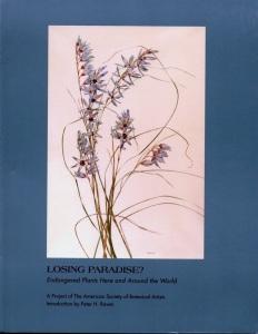 LosingParadise
