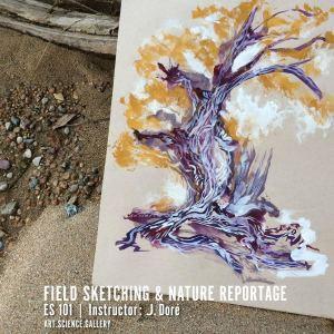 Dore_FieldSketching
