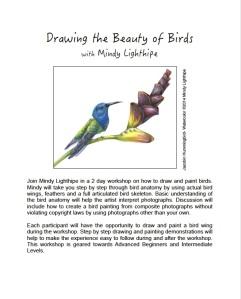 Jacobin Hummingbird, watercolor ©2014 Mindy Lighthipe