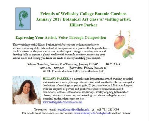 Artplantae connecting artists naturalists and educators for Wellesley college botanic gardens