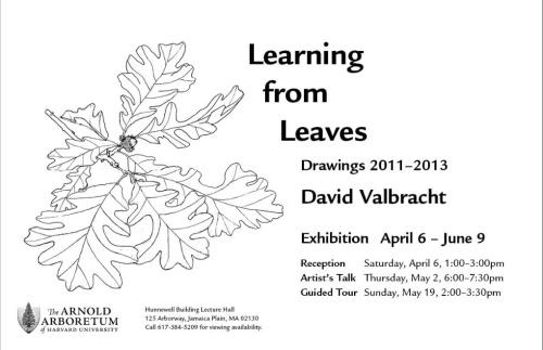 Go to Arnold Arboretum Art Shows